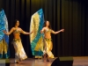 belly-dance-academy-troupe-in-their-gold-dream-costumes-2
